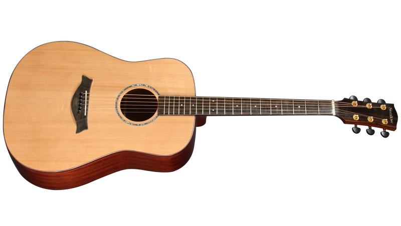 gia su dan guitar